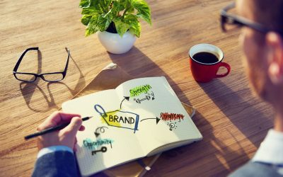 Guest Post- How to Build Brand Trust With Transparency: Top Tips